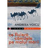 Ce fluiera camilele pe malul marii - Andreea Voicu, editura Paralela 45