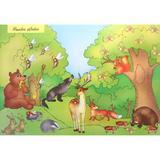 Planse. Flora fauna. Educatia ecologica (30 planse), editura Dorinta