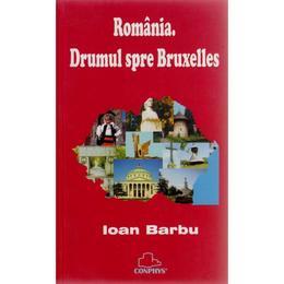 Drumul spre Bruxelles - Ioan Barbu, editura Semne