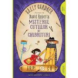 Aripi si Co. Vol.4: Misterul cutiilor de chibrituri - Sally Gardner, David Roberts, editura Grupul Editorial Art