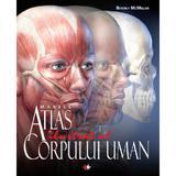 Marele atlas ilustrat al corpului uman - beverly mcmillan, editura Litera