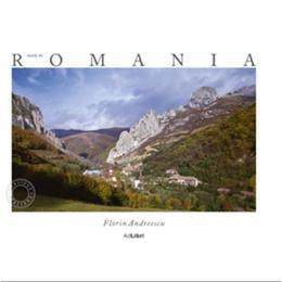 Made in Romania - Lb. Italiana - Florin Andreescu, editura Ad Libri