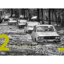 Flashback 2 - Florin Andreescu, editura Ad Libri