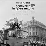 Decembrie 89 in 89 de imagini - Andrei Pandele, editura Humanitas