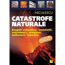 Catastrofe Naturale, editura Niculescu