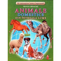 Animale domestice din intreaga lume - Cartonase - Silvia Ursache, editura Silvius Libris