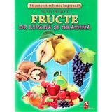 Fructe de livada si gradina - Cartonase - Silvia Ursache, editura Silvius Libris