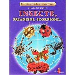 Insecte, Paianjeni, Scorpioni... - Cartonase - Silvia Ursache, editura Silvius Libris