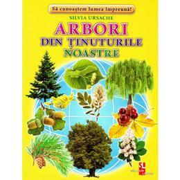 Arbori din tinuturile noastre - Cartonase - Silvia Ursache, editura Silvius Libris