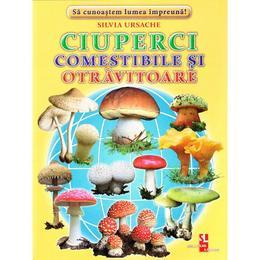 Ciuperci comestibile si otravitoare - Cartonase - Silvia Ursache, editura Silvius Libris