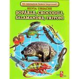 Soparle, crocodili, salamandre, tritoni - Cartonase - Silvia Ursache, editura Silvius Libris