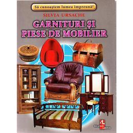 Garnituri si piese de mobilier - Cartonase - Silvia Ursache, editura Silvius Libris