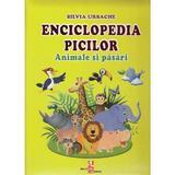Enciclopedia picilor: Animale si pasari - Silvia Ursache, editura Silvius Libris