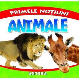 Primele notiuni: Animale, editura Anteea