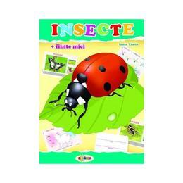 Insecte (mapa) - Inesa Tautu, editura Dorinta