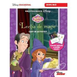Sofia Intai - Lectia de magie - Caiet de activitati. Grupa mica, editura Litera