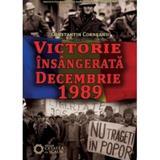 Victorie Insangerata Decembrie 1989 - Constantin Corneanu, editura Cetatea De Scaun