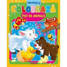 Descopera si coloreaza puii de animale, editura Crisan
