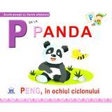 P de la Panda - Peng, in ochiul ciclonului (cartonat), editura Didactica Publishing House