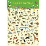Plansa: 100 de animale, editura Didactica Publishing House