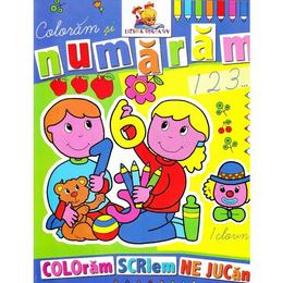 Coloram si numaram - Coloram, scriem, ne jucam, editura Lizuka Educativ