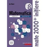 Matematica - Clasa 8. Partea 2 - Caiet. Initiere - Ion Tudor, editura Paralela 45
