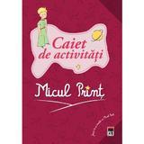 Micul Print - Caiet de activitati, editura Rao
