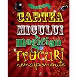 Cartea micului magician. Trucuri nemaipomenite - Joe Fullman, editura Litera