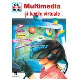 Ce si cum - Multimedia si lumile virtuale, editura Rao