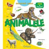 Descopera lumea - Animalele, editura Crisan