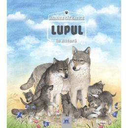 Animale salbatice in natura - Lupul, editura Didactica Publishing House