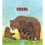Animale salbatice in natura - Ursul, editura Didactica Publishing House