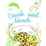 Ouale sunt tacute - Dianna Hutts Aston, Sylvia Long, editura Gama