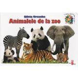 Animalele de la zoo - Silvia Ursache, editura Silvius Libris