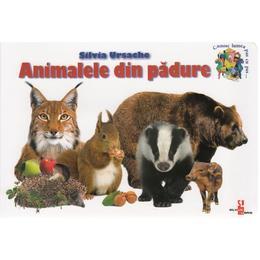 Animalele din padure - Silvia Ursache, editura Silvius Libris