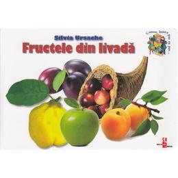 Fructele din livada - Silvia Ursache, editura Silvius Libris
