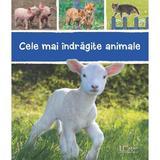 Cele mai indragite animale, editura Univers Enciclopedic