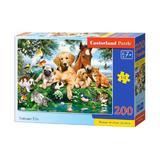 Puzzle 200. Summer Pals