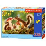 Puzzle 260. Squirrel's Forest Life