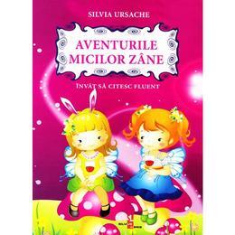 Aventurile micilor Zane - Silvia Ursache, editura Silvius Libris