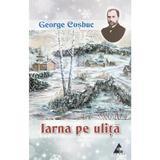 Iarna pe ulita - George Cosbuc, editura Agora