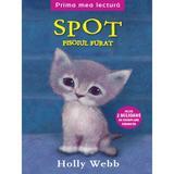 Spot, pisoiul furat - Holly Webb, editura Litera