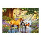 Puzzle Castorland - 1000 de piese - Steve Crisp : Horses by the stream