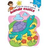 Sa coloram cu apa. Animale exotice. Carte de colorat magica