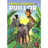 Animale salbatice si puii lor. Carte de colorat cu abtibilduri, editura Kreativ