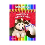 Colorez: Animale domestice, editura Dorinta