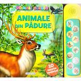 Glasuri vesele: Animale din padure, editura Girasol