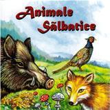 Animale salbatice (pliant), editura Nicol