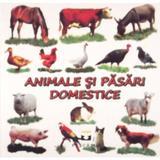 Animale si pasari domestice - Pliant, editura Petrescu And Cioponea
