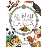 Animale din lumea larga, editura Flamingo